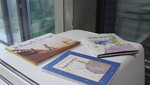 Martina Dlabajová ukázala část sbírky knih o Malém princi v různých jazycích.