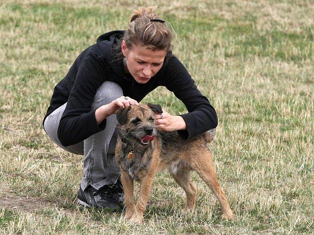 Brněnští strážníci z odboru prevence pro děti a jejich psy připravili zábavně vzdělávací program.