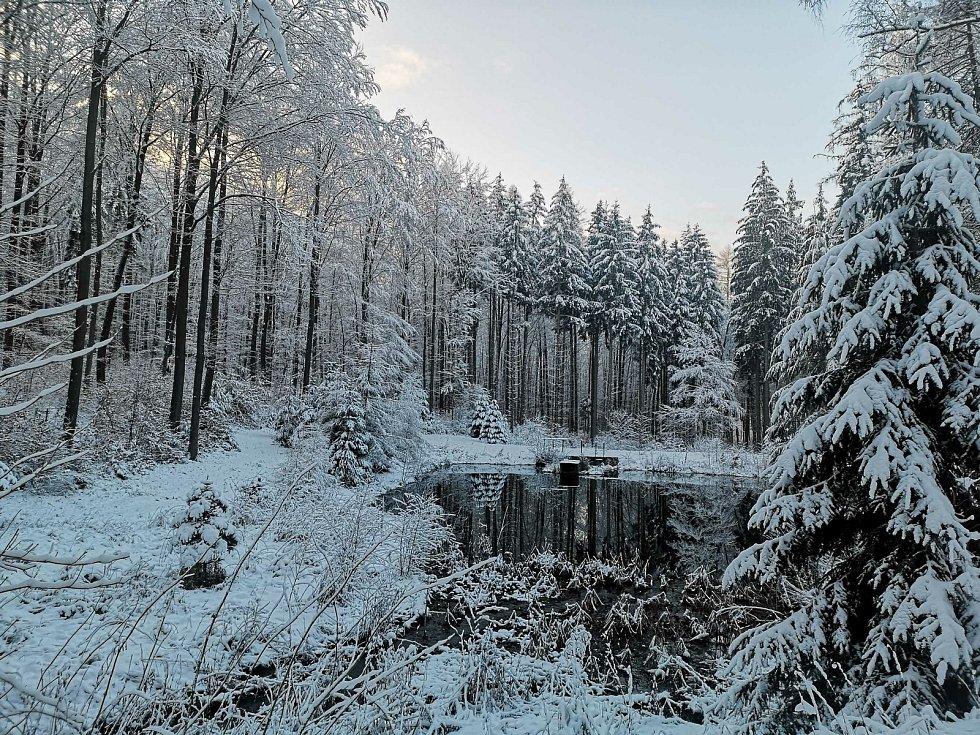 Lesní cesta Schindlerova a celkový pohled na retenční nádrž v zimě.