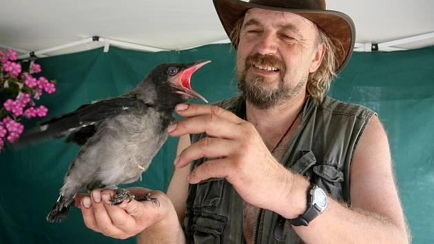 Lidé Zdeňku Machařovi do stanice nazvané Ptačí centrum nyní předávají i dvacet zvířat denně