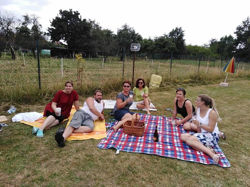 Akce Česko jde spolu na piknik vyzvala lidi z různých míst naší země, aby pořádali ve stejný čas piknik. Na snímku setkání na koupališti zavadilka u Nymburka.