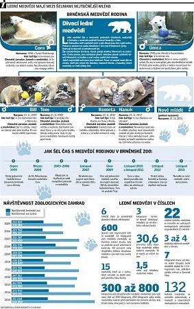 Infografika ktématu ledních medvědů vzoo.