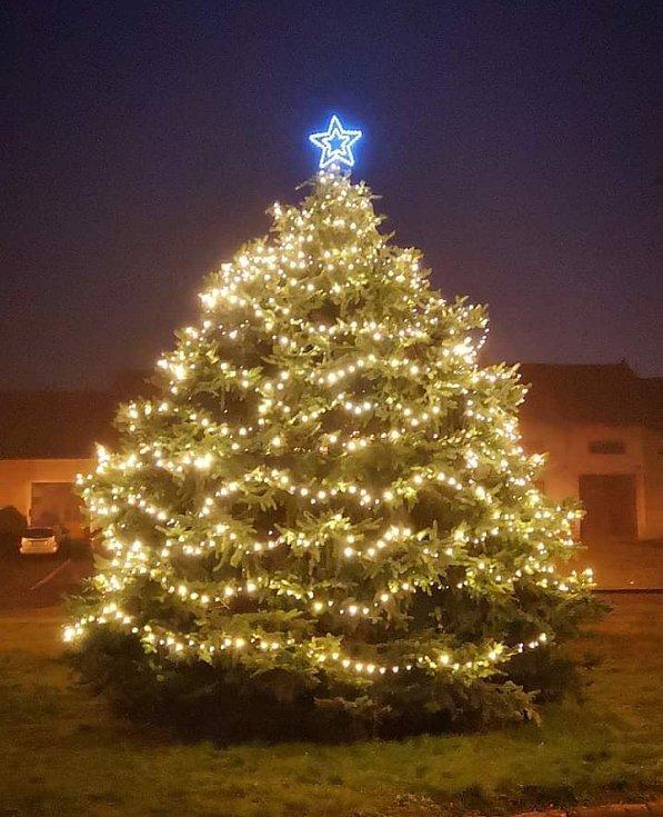 Vánoční strom v Bohatých Málkovicích.