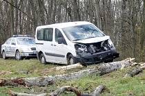Silný vítr lámal stromy u silnice mezi Valtrovicemi a Křidlůvkami. Na projíždějící dodávku Peugeot jeden ze stromů spadnul.