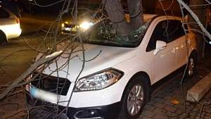 17 tisíc domácností bez elektřiny. Silný vítr způsobil na jižní Moravě kalamitu