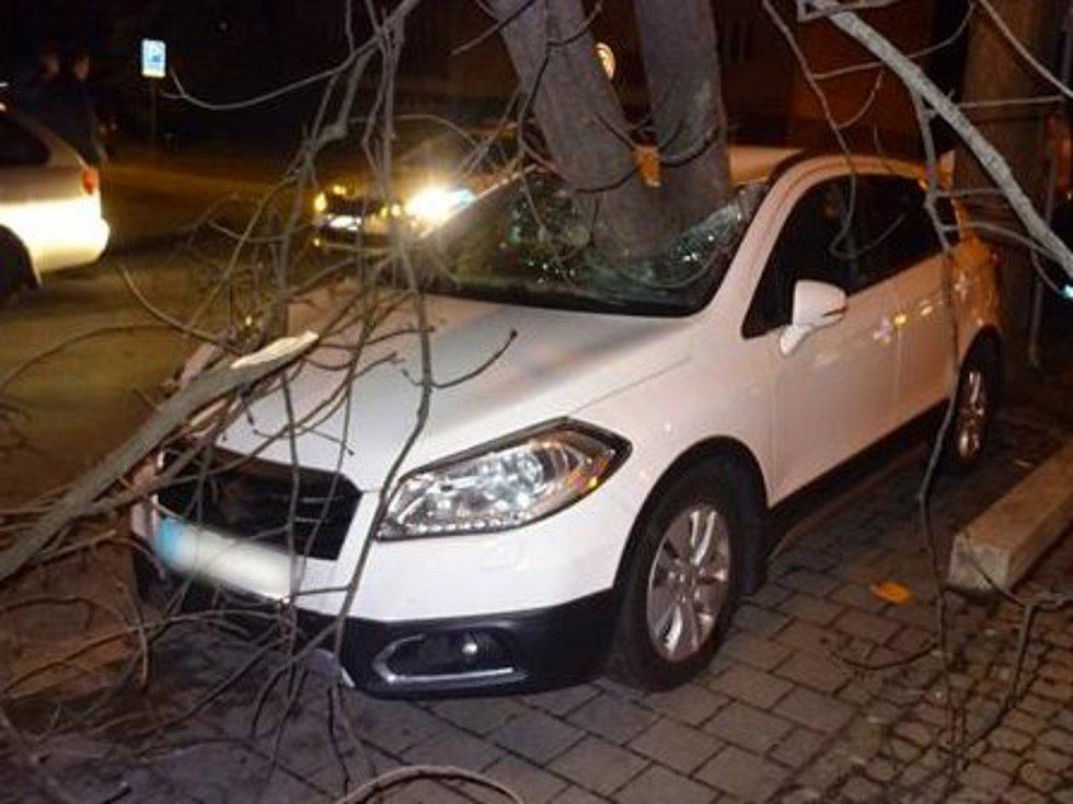 Rozlomený strom v Brně probodl čelní sklo osobního auta.