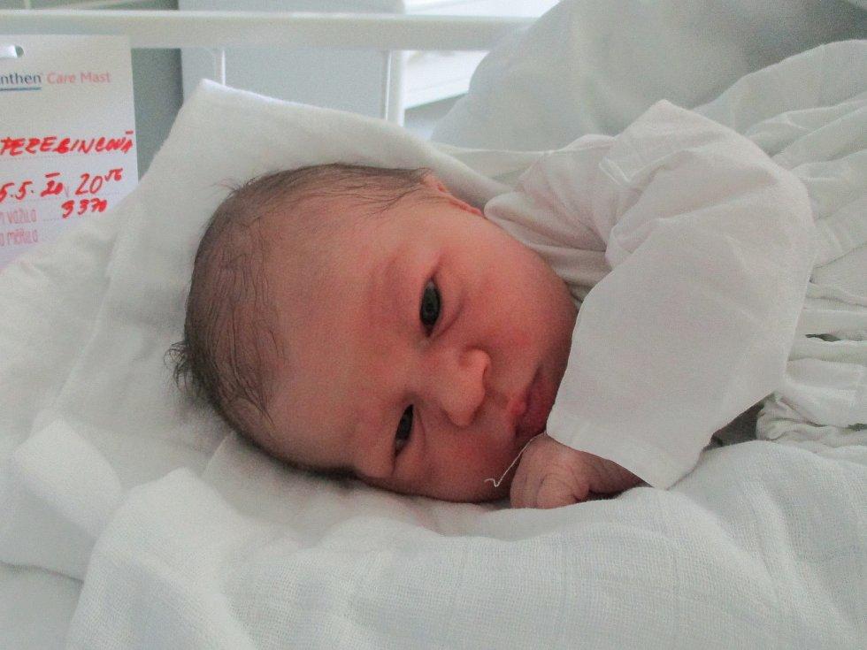 Olivie Peregincová, Březí, 5. května 2020, 20.56, Nemocnice Břeclav, 53 centimetrů, 3370 gramů.