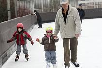 Na led v Králově Poli vyjeli bruslaři.