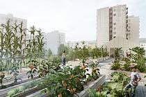 Vizualizace plánovaného komunitního centra.