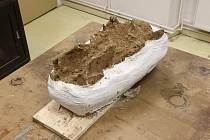 Šedesáticentimetrovou čelist v pátek převzali vědci z Moravského zemského muzea, kde ji v brněnském Anthropose dále prozkoumají. Foto:
