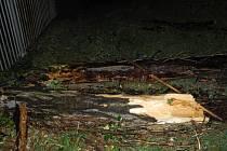Strom zasáhl tři osoby na brněnském zápase Zbrojovky proti Spartě.