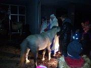 Tři králové s sebou přivezli i osla