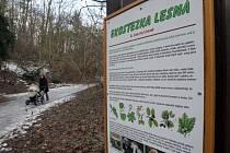 Návštěvníkům parku Čertova rokle slouží několik dětských hřišť i značená stezka upozorňující na rostliny a živočichy, se kterými se mohou lidé v parku setkat.