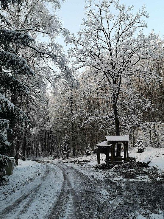 Lesní cesta Schindlerova a odpočívadlo.