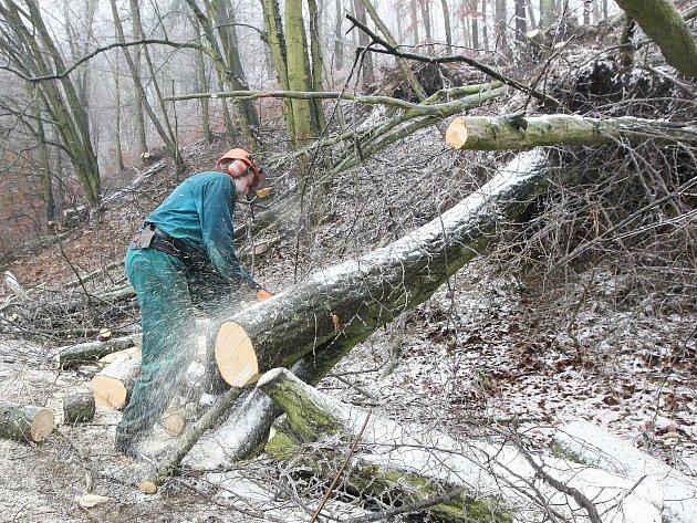 S následky ledové kalamity se potýkala doprava na téměř celé jižní Moravě.
