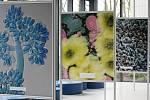 Z dálky mohou někomu připomínat rozkvetlé květiny. Při bližším prozkoumání exponátů na nové výstavě na brněnské hvězdárně však návštěvníci zjistí, že jde o mnohonásobně zvětšené vzorky plísní.