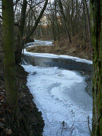 Řeka korytná v zimě.