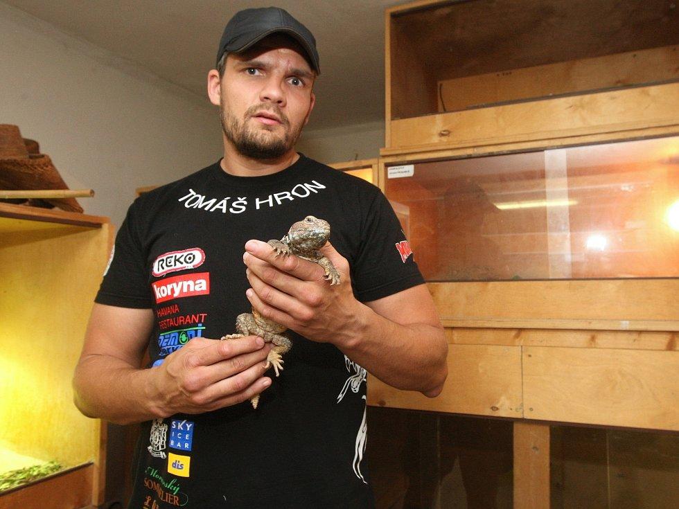 Brněnský thajboxer Tomáš Hron, evropský i světový šampion, doma relaxuje při krmení jedovatých hadů, varanů nebo třeba leguána