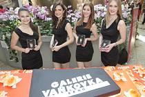 Středeční slavnostní zahájení oslav deseti let brněnské Galerie Vaňkovka.
