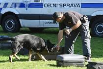 Den s Městskou policií Brno a nejen s ní... v areálu brněnské Riviéry