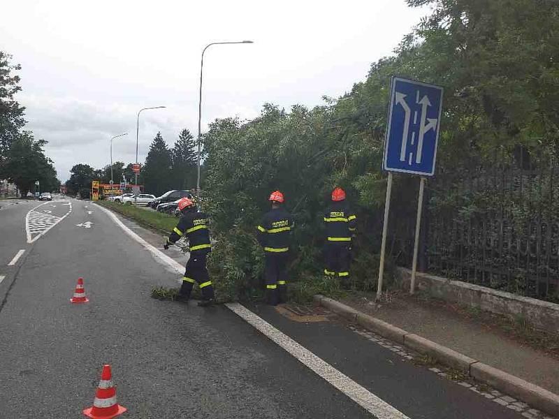 Ve Veselí nad Moravou odstranili hasiči po bouřce část stromu.