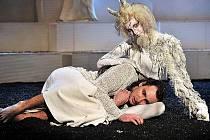 Thébského vladař Oidipus Jiří Mach, připsanou figuru Faunky, která nad příběhem stále dozírá, hraje členka baletního souboru Simona Šeligová. Autorkou téměř identických kostýmů je Andrea Kučerová.
