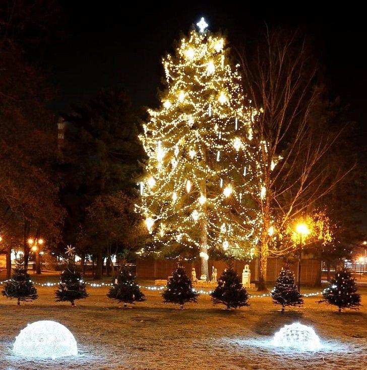 Vánoční strom v Břeclavi.