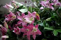Květinami rozkvetla chodba kláštera a kaple, kde se mohou návštěvníci pokochat stovkami barevných květů.