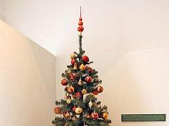 Informace o tom, jak dříve vypadaly vánoční skleněné baňky a ozdoby na stromek, lidé najdou v Moravském zemském muzeu v Brně. Až do 26. února bude totiž v Paláci šlechtičen výstava s názvem Skleněná krása aneb Historie nejen vánočních ozdob.