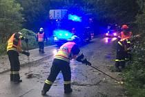 Úklid vozovky po spadlém stromu kvůli bouřce u brněnských Chrlic.