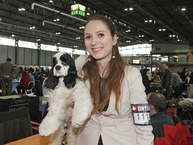 Pavilon V brněnského výstaviště o víkendu zaplnilo 2867 psů z 284 plemen.