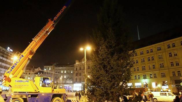 Vánoční strom pro Brno již čeká ukotvený na náměstí Svobody.