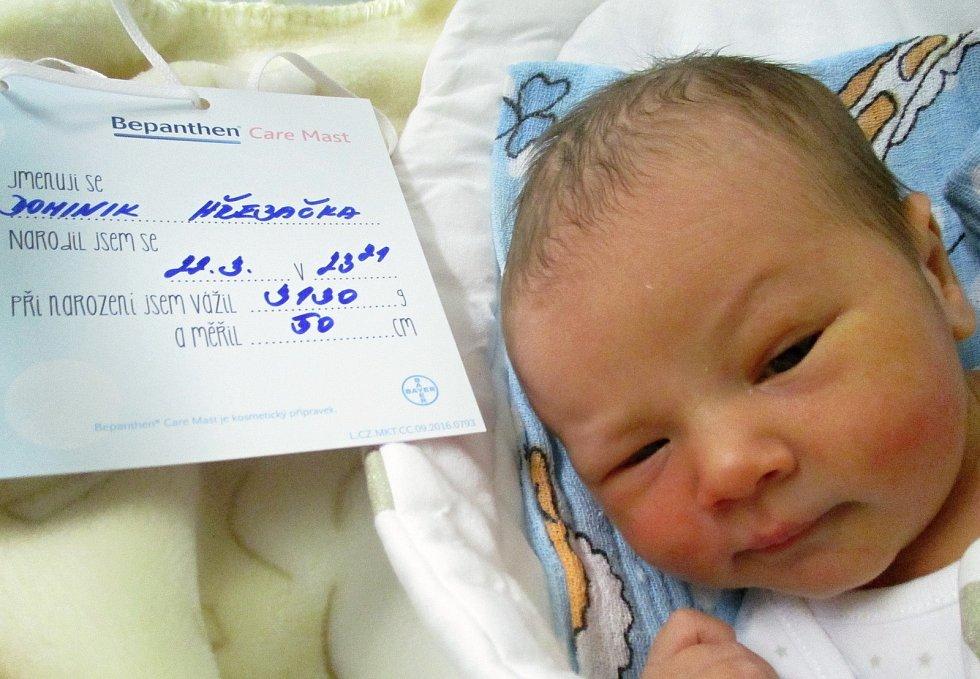 Dominik Hřebačka, 22. 3. 2021, Nemocnice Břeclav, 3100 g, 50 cm