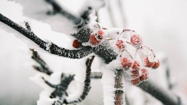 Ilustrační zimní fotografie.
