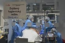 Fakultní nemocnice u svaté Anny v Brně.