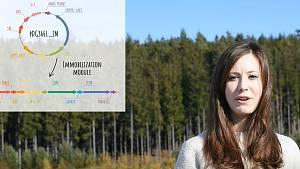 Brněnští studenti chtějí vyčistit vodní toky od sinic pomocí bakterií
