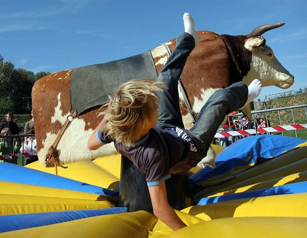 Některým účastníkům se zkrotit býka nepodařilo.