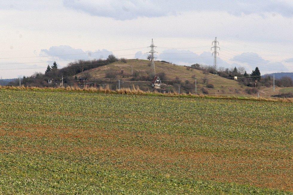 Koně se z ohrady v Medlánkách vydali přes pole směrem k brněnskému tunelu.