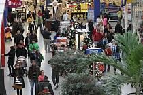 Poslední dny před Vánoci se obchodní domy plní lidmi. Shánějí dárky i jídlo na Štědrý den.