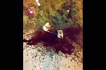Jen plápolající světlo svíčky a kaluž krve kolem spatřila v pondělí večer čtenářka Deníku Rovnost Petra Mazroviová, když šla s kamarádkou z práce domů po Křenové ulici v Brně.