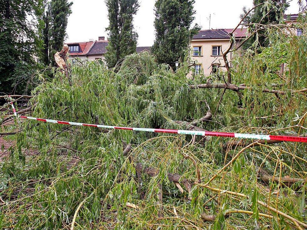 Následky bouřky v Brně.