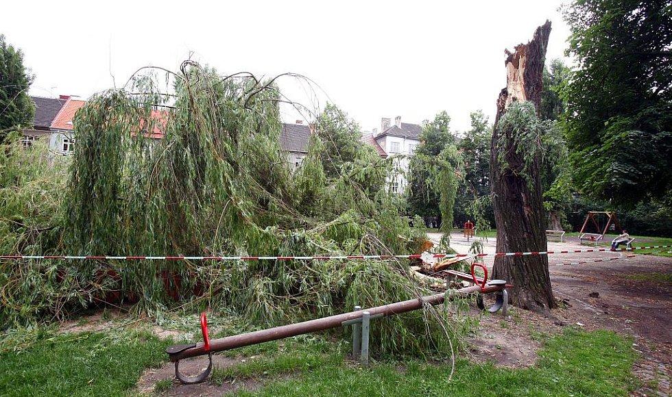 Následky bouřky v brněnských Lužánkách.