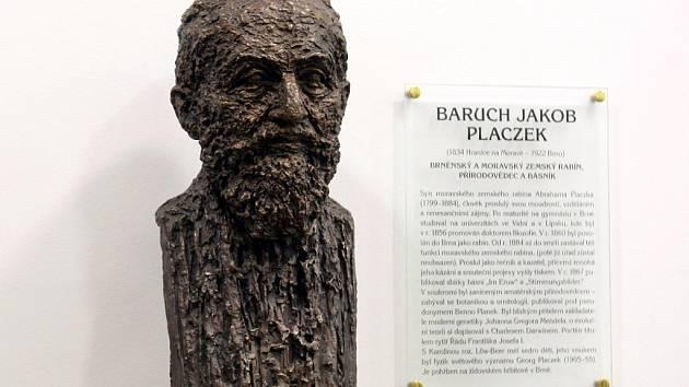 Bustu posledního moravského zemského rabína Barucha Jakoba Placzka slavnostně odhalili ve vstupní hale budovy brněnské židovské obce.