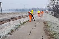 Oprava povrchu cyklostezky mezi Blučinou a Židlochovicemi.
