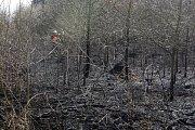 Požár lesa u Oslavan na Brněnsku.
