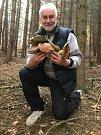 Jihomoravský hejtman Bohumil Šimek si o víkendu našel čas i na houbaření.