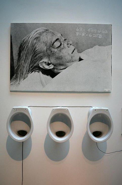 Výstava Jiřího Davida.