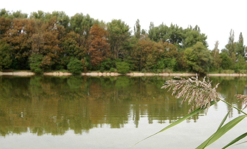 Vodní systém na Černovickém potoce mezi brněnskými Holáskami a Ivanovicemi tvoří sedm jezer a tři umělé nádrže.