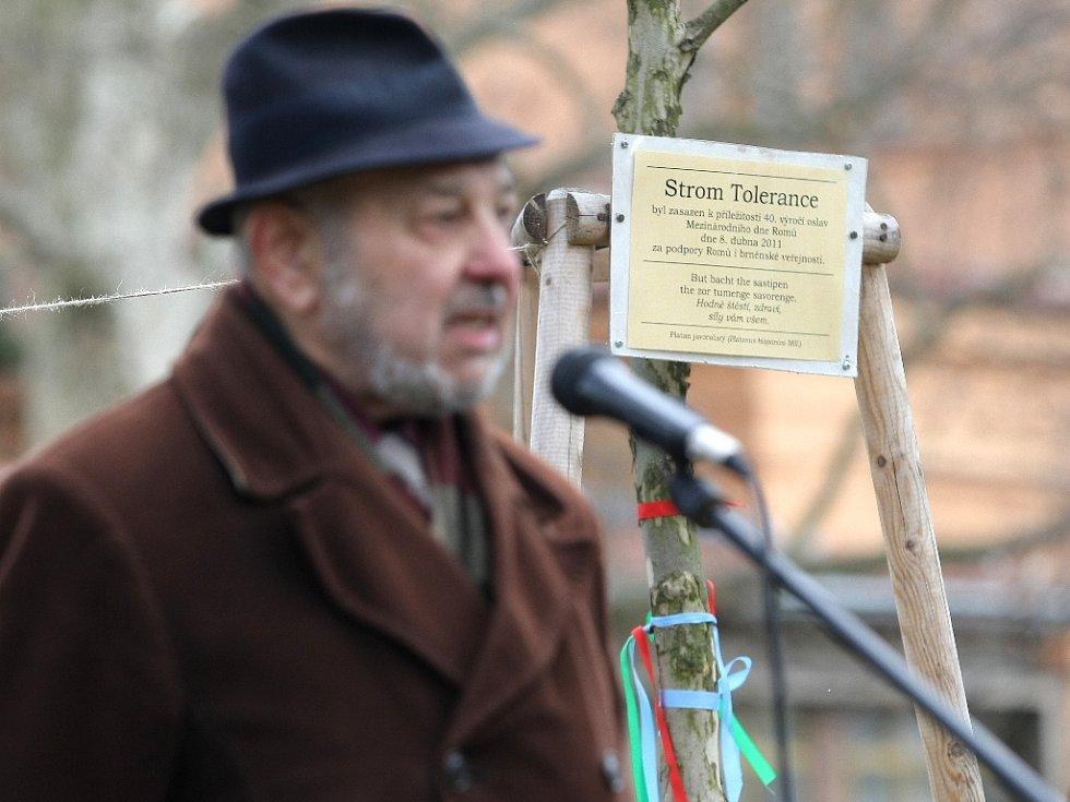 Romové v neděli oslavili svůj mezinárodní den v lužáneckém parku. Vázali stužky na strom tolerance, který tam zasadili před rokem.
