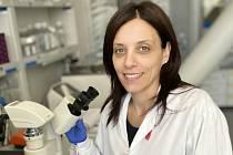 Brněnští vědci testují léčbu defektu lebky.